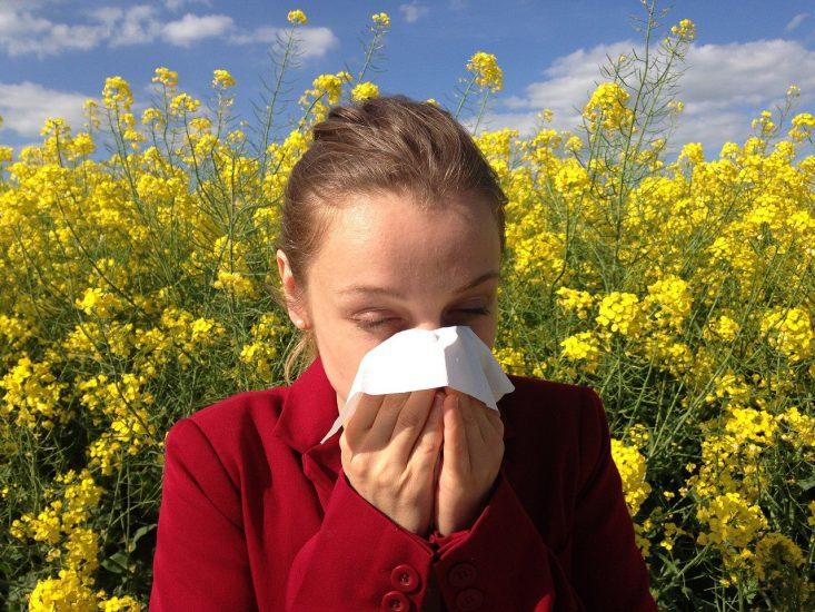 Leven met een allergie
